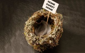 The Real Empty Nest